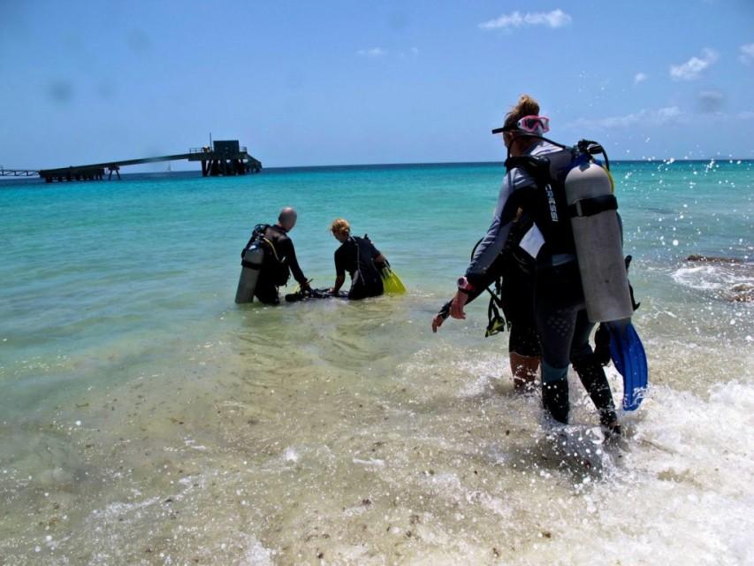 Bonaire-449-1024x768