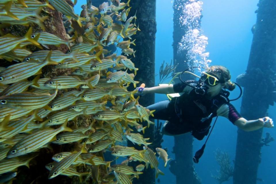 Bonaire_343-1024x682