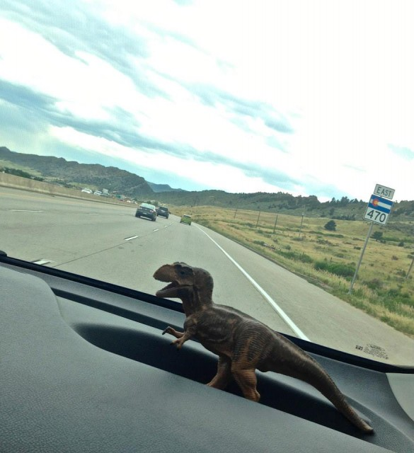 Our hitchhiker