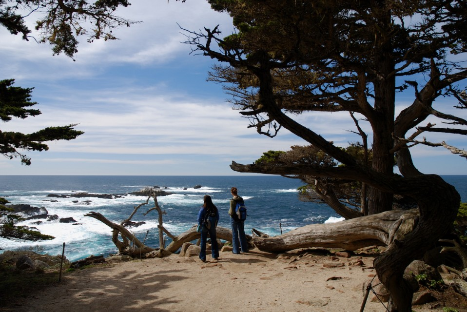 Point Lobos State Reserve 5