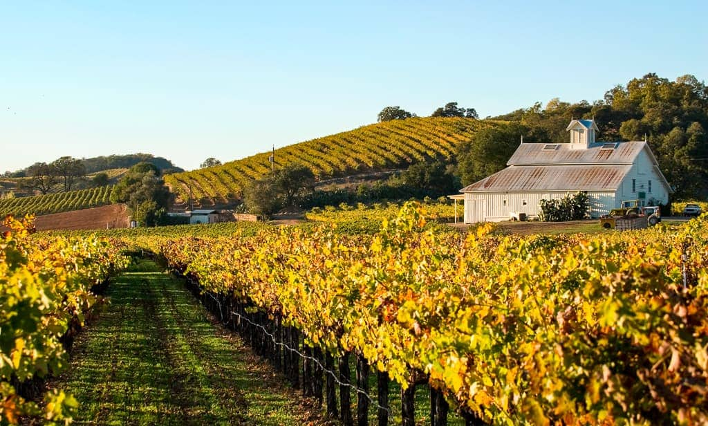 A Lovers' Guide to Napa Valley