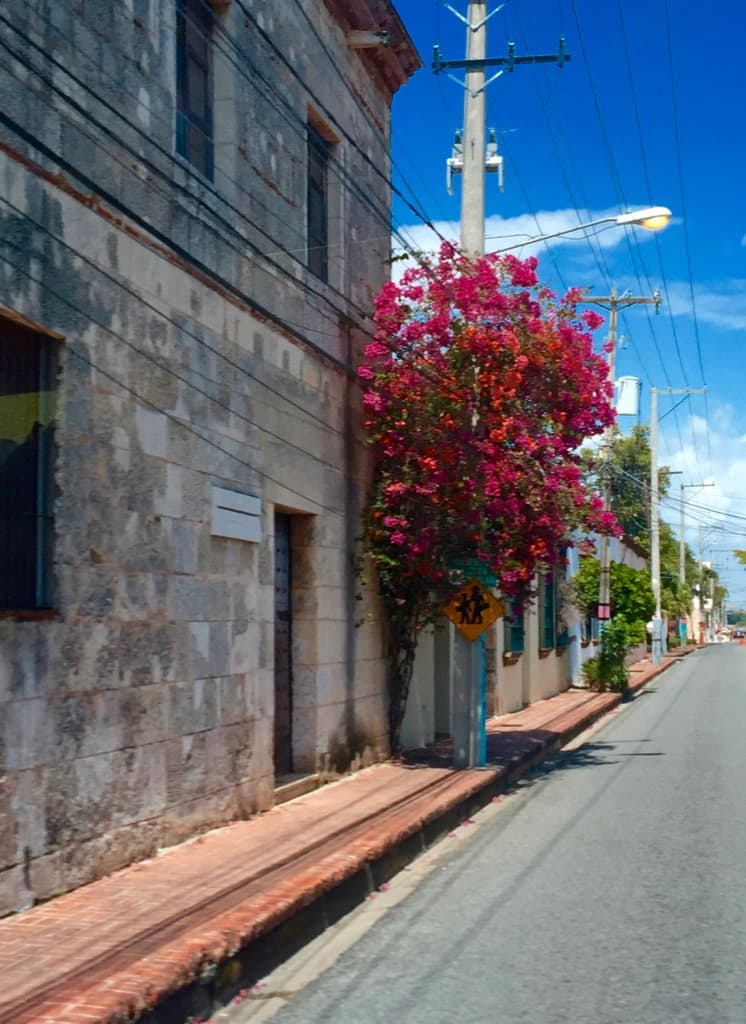 Come along with PointsandTravel to discover Santa Domingo - The First City of the New World.
