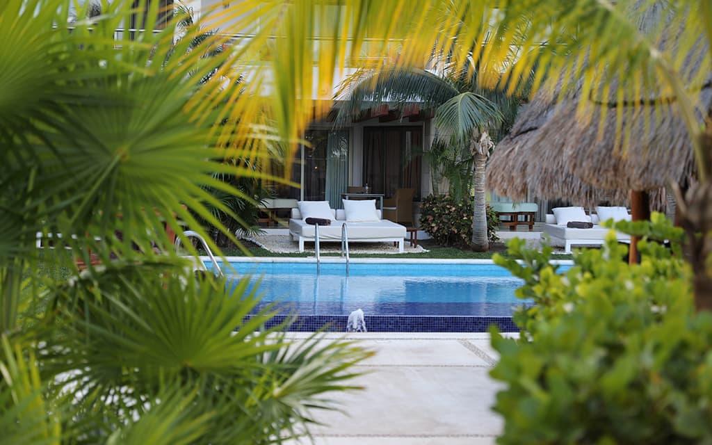 Swim-up Suite at Beloved Playa Mujeres