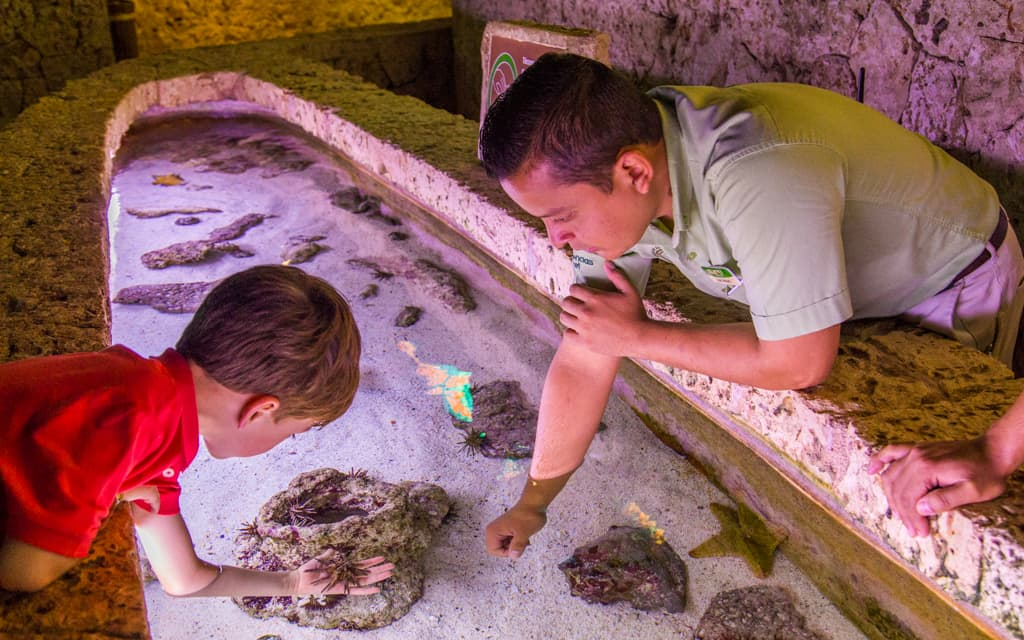 Riviera Maya with kids - Hands-on learning at Xcaret