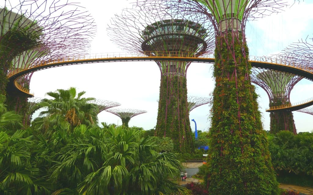 6 Things to Do in Singapore with Kids