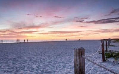 Best Beaches for Shelling in Florida