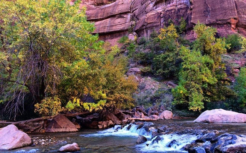 Zion - National Parks