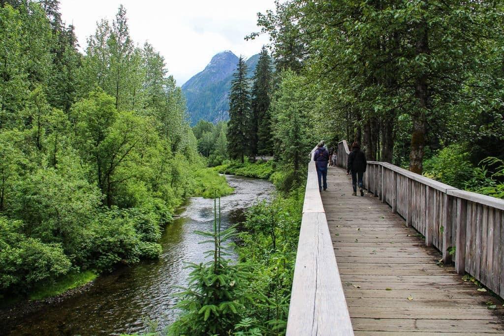 Fish Creek Wildlife Observation Site, Hyder AK