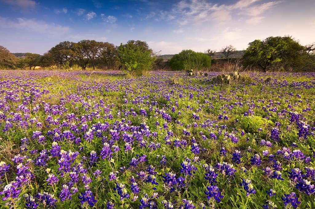 Fredericksburg, TX - Day Trips from Dallas