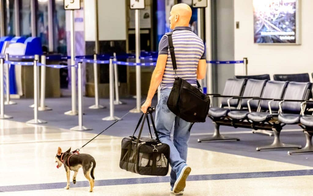 travel tips for flying with your dog - man walking dog through airport
