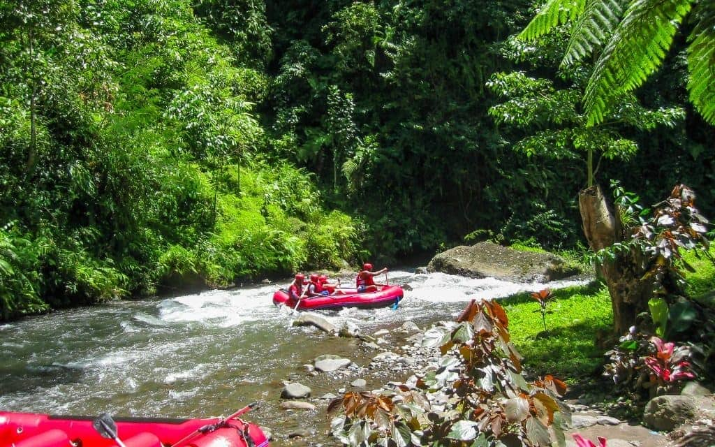 Must do in Bali - canyon tubing
