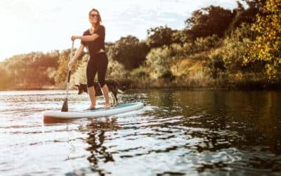 7(ish) Awesome Things to Do in Austin