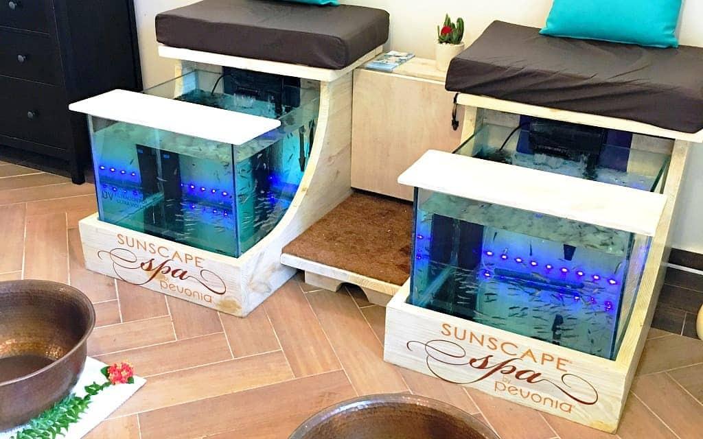 Fish spa pedicure at Sunscape Spa - Travelocity.com