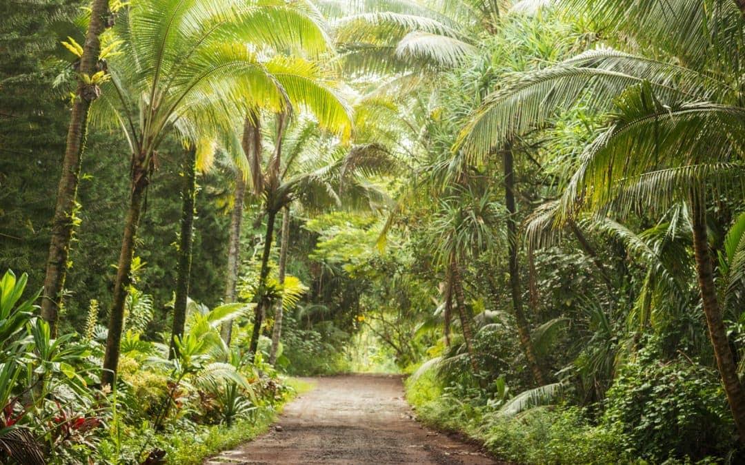 5 Unique Reasons We Love Hawaii's Big Island