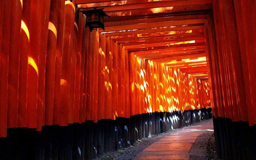 Kyoto Japan by Keryn Means