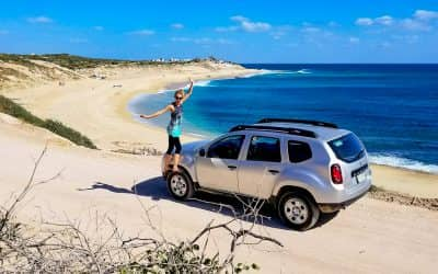 Baja Road Trip: Whale Sharks, Mezcal, and Hotel California