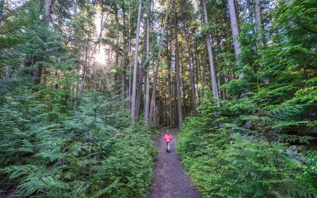 Family Travel 2018: Hiking in Glacier National Park