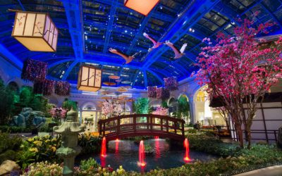 The Best Las Vegas Hotels Based on Your Personality Type