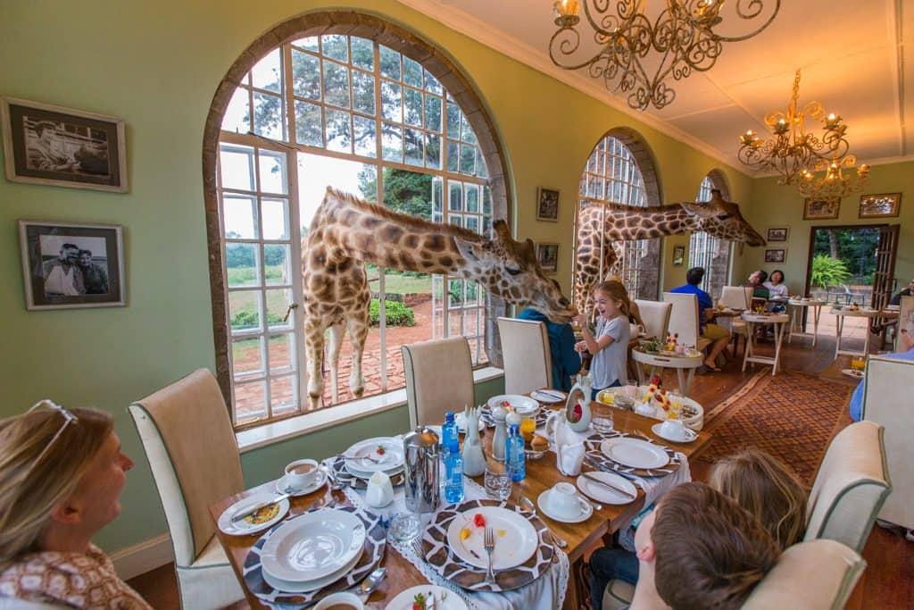 Extraordinary hotels: Giraffe Manor