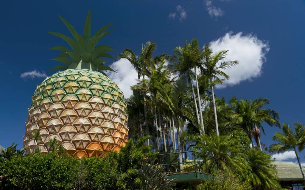 The Big Pineapple, a tourist attraction in Queensland, Australia