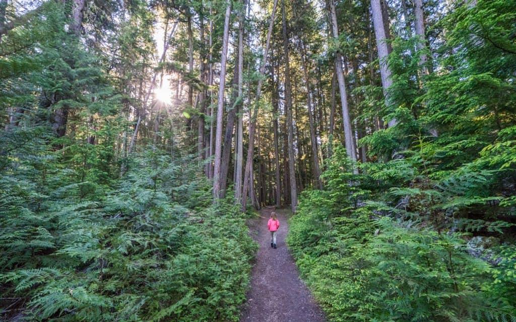 Glacier National Park - Sperry Trail in Glacier National Park