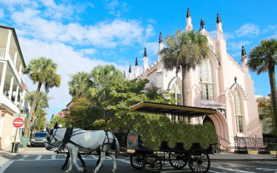 Six Ways to Really Get to Know Charleston