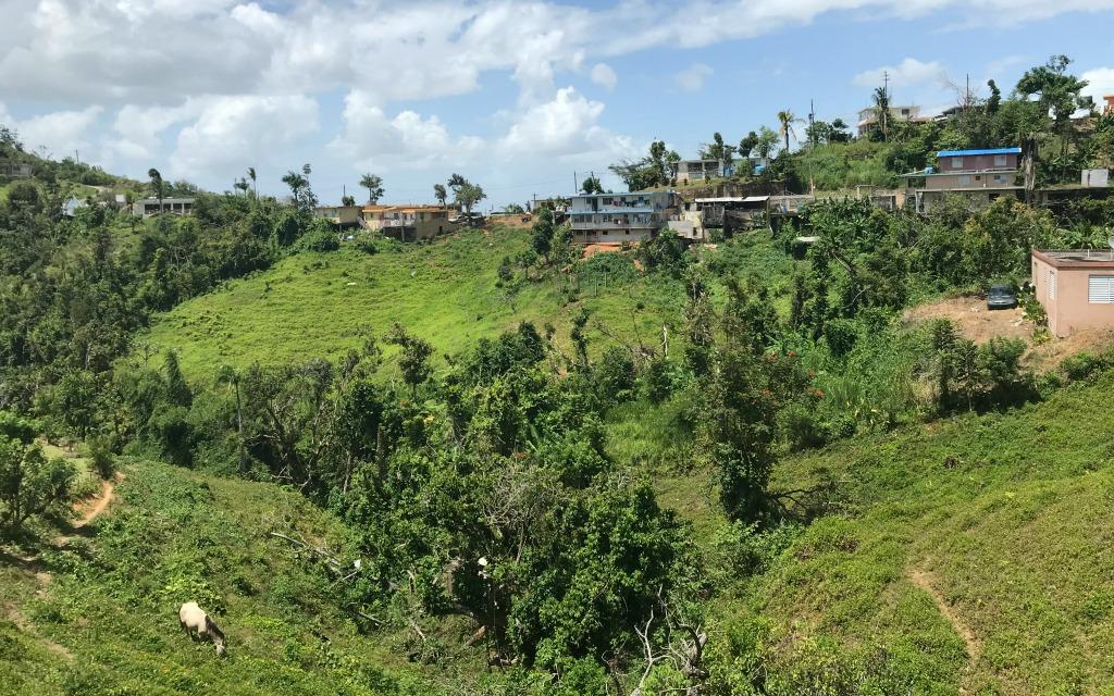 Ancestry Tourism Genealogy Research Gurabo Puerto Rico-Kirsten Maxwell Travelocity