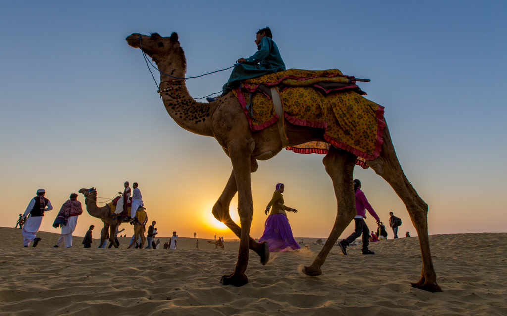Five Amazing Places to Visit in India