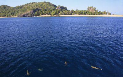 9 Reasons to Visit Fiji … Beyond Those Gorgeous Overwater Bungalows