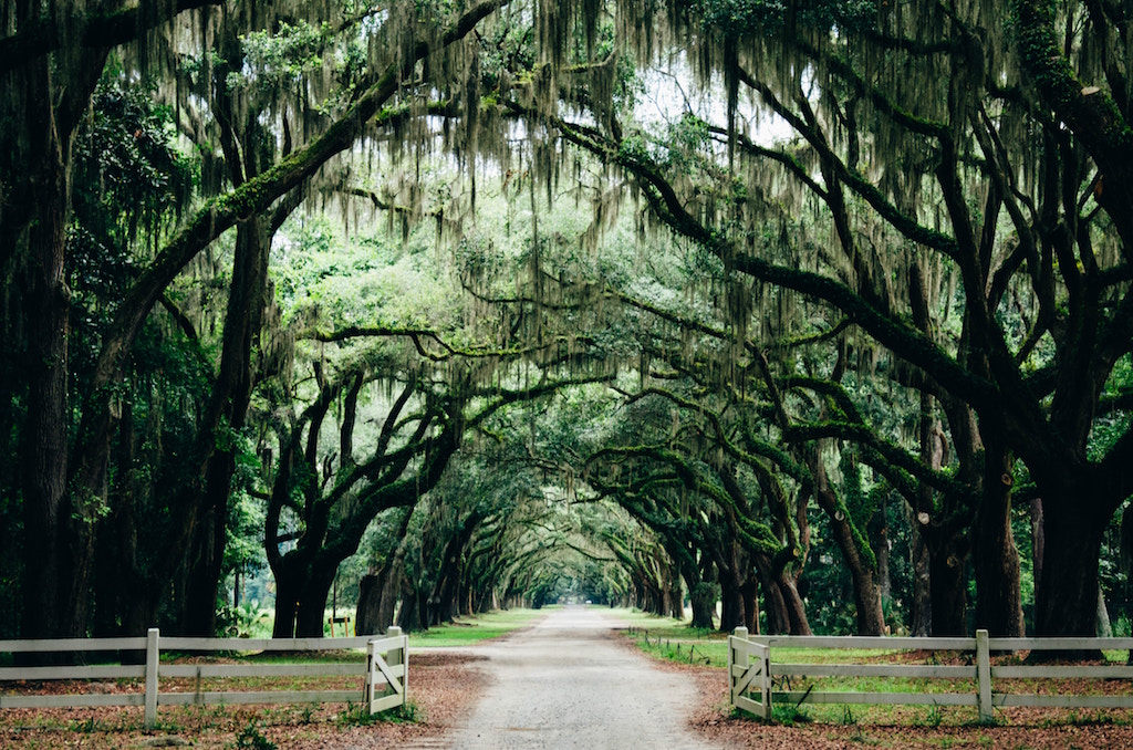 beautiful places to visit in the US
