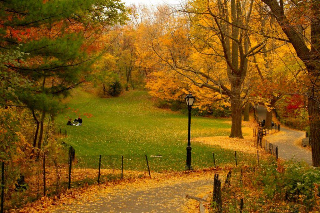 Central Park, NYC, New York, autumn