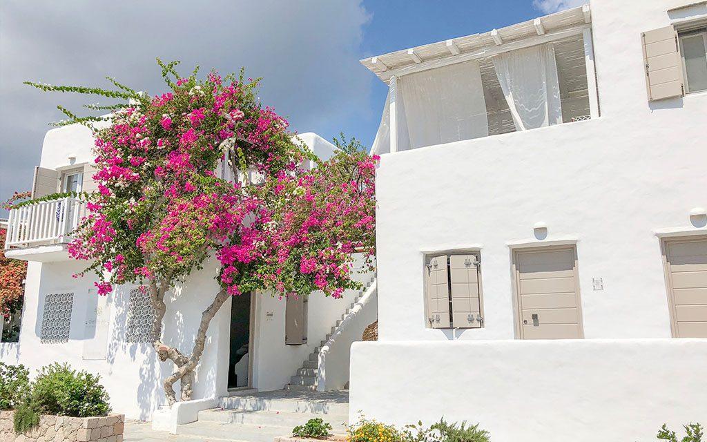 Delmar Apartments and Suites
