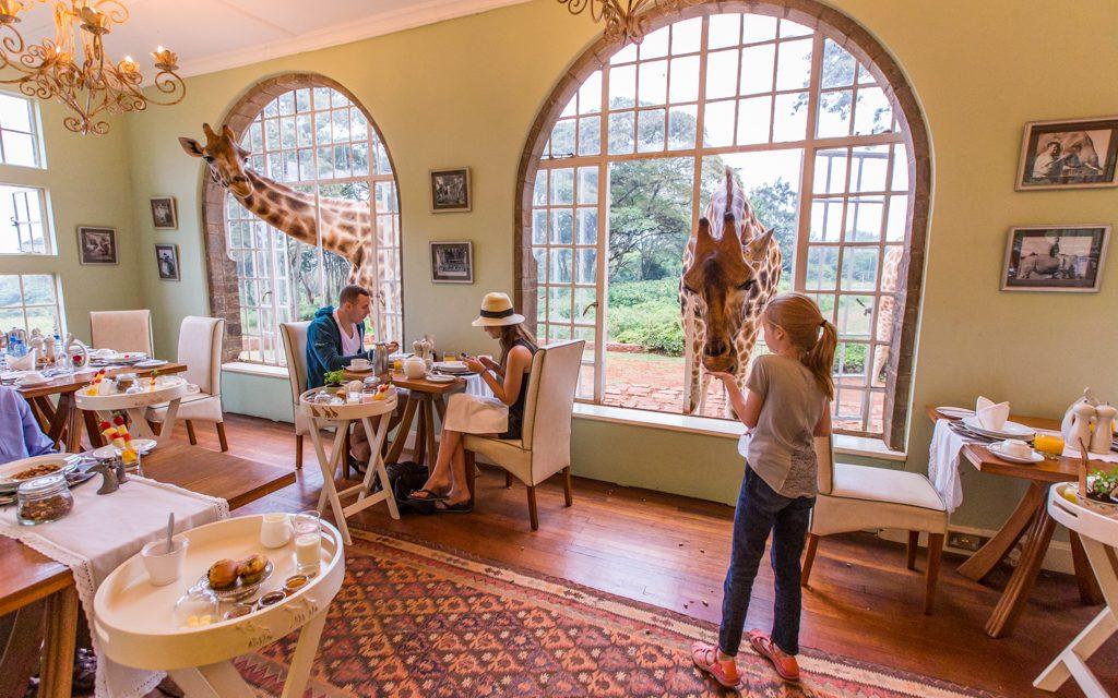 Safari tips - At Giraffe Manor at the end of our family safari