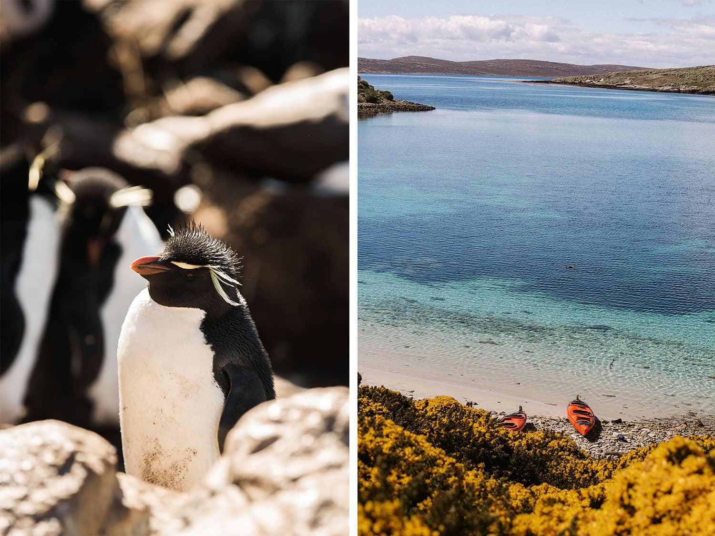 Falkland Islands West Point