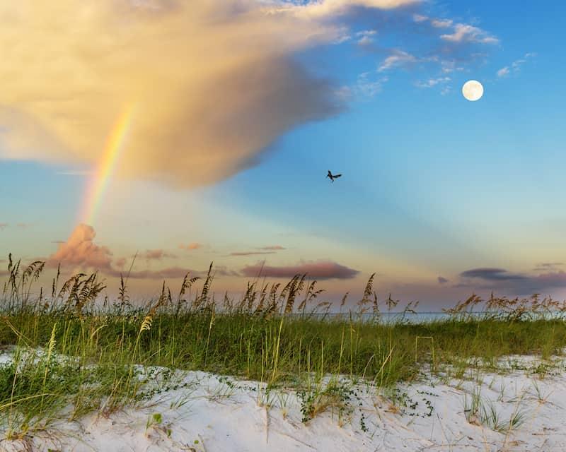 A beach on Mississippi's Gulf Coast