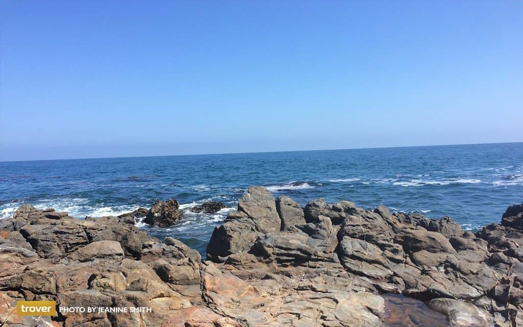 Portuguese Bend Beach - trover - Jeanine Smith
