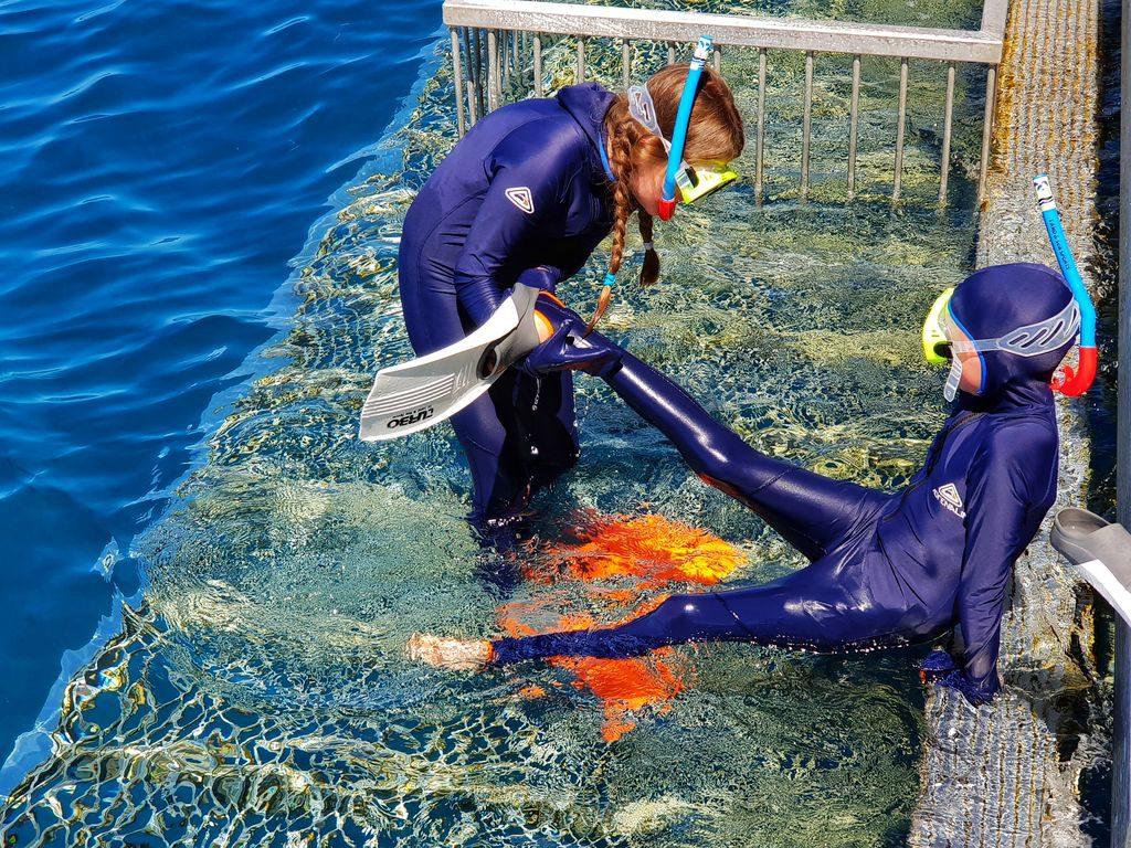 Great Barrier Reef With Kids - Snorkel