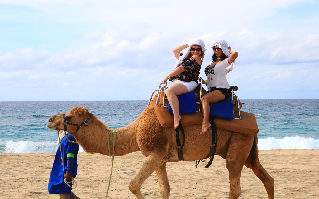 Going for a camel ride on the beach in Cabo