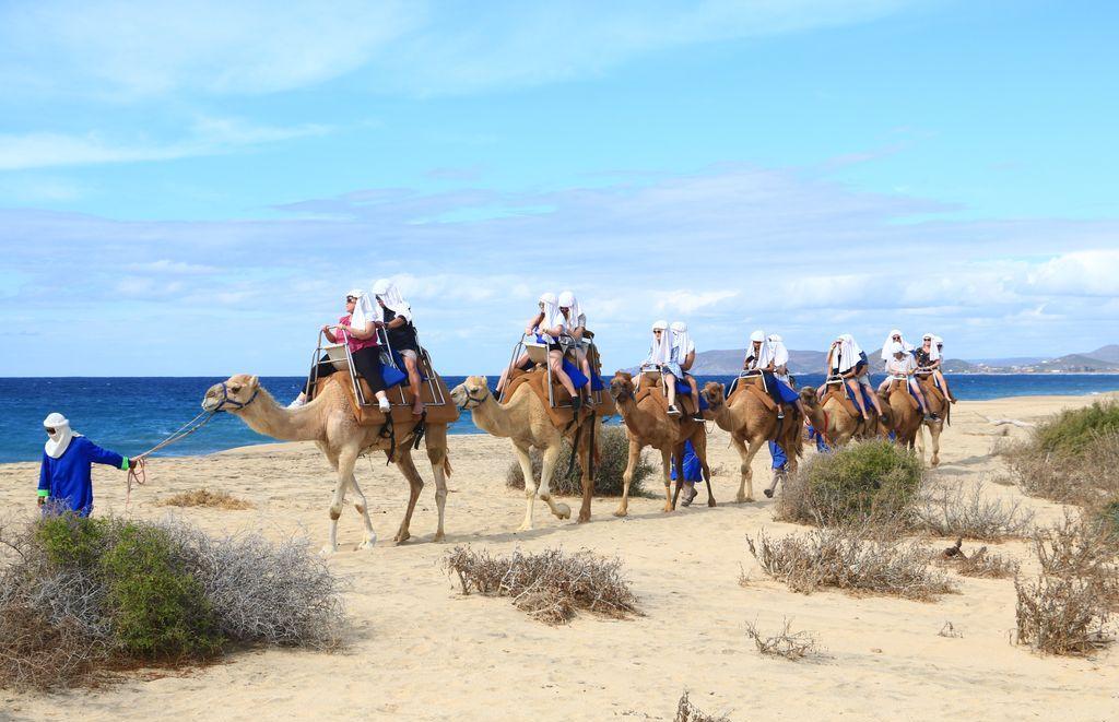 3 Best Beach Adventures In Cabo