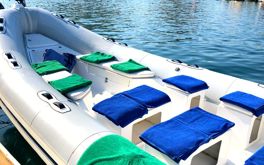 Cabo Adventures snorkeling - Travelocity.com