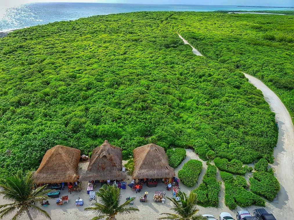 Volunteering on vacation - Punta Sur