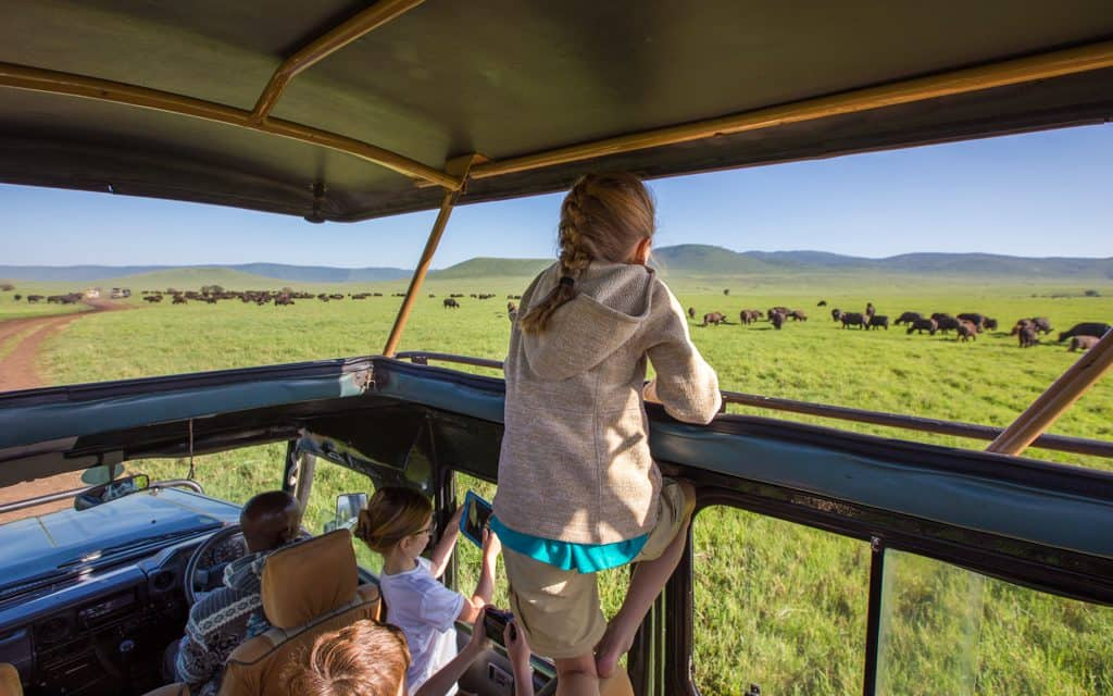 Family Travel Inspiration - Watching buffalo in Tanzania's Ngorongoro Crater