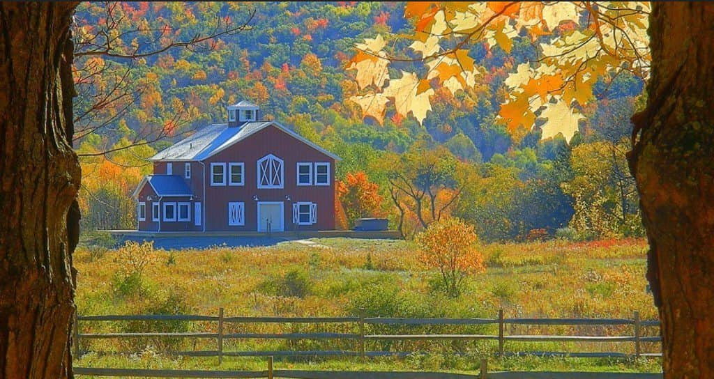 Finger Lakes, ranch, New York