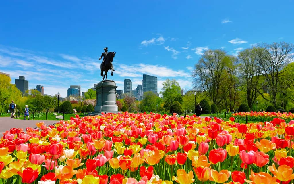 Boston Botanical Gardens