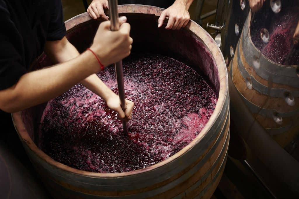 grapes, wine