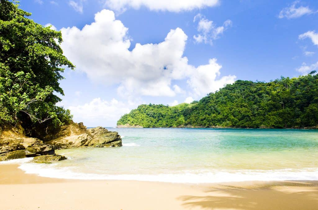 Which side of this Caribbean paradise is for you—Trinidad or Tobago?