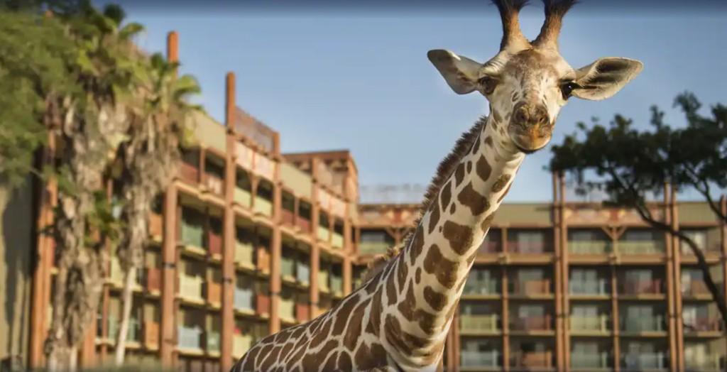 A superfan ranks every Walt Disney World hotel