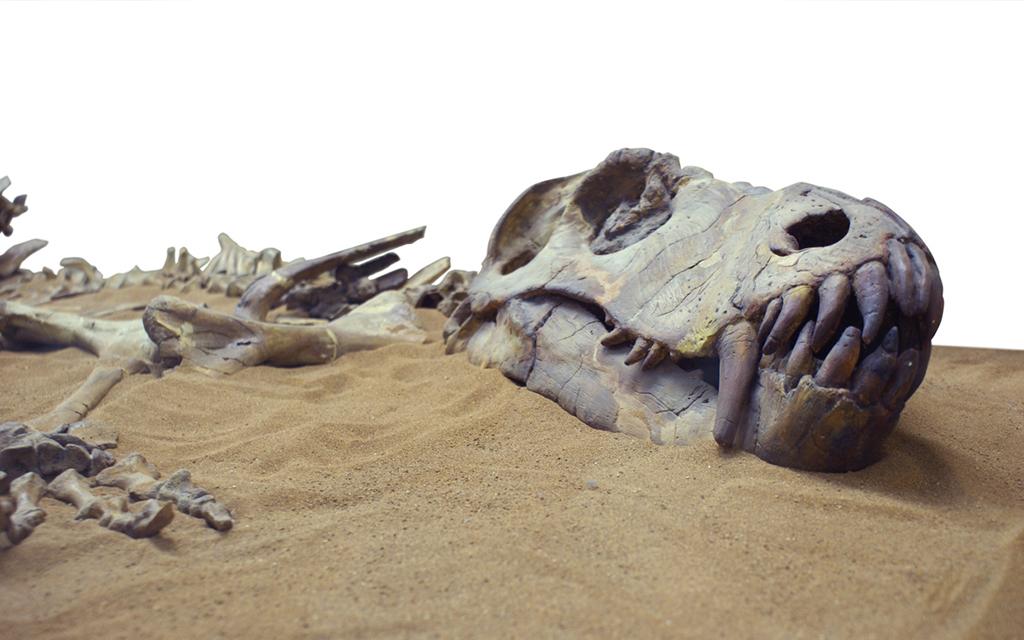 Dig into dinosaur fandom at these 8 destinations
