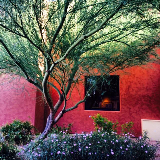 Phoenix Like A Local, Sheraton Wild Horse Pass