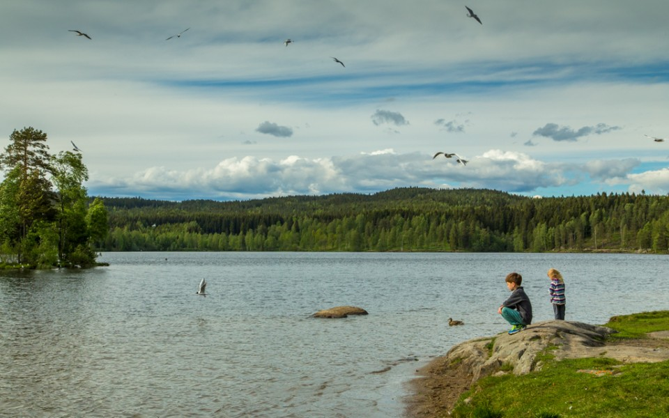 Oslo with kids - A summer evening at Sognsvann